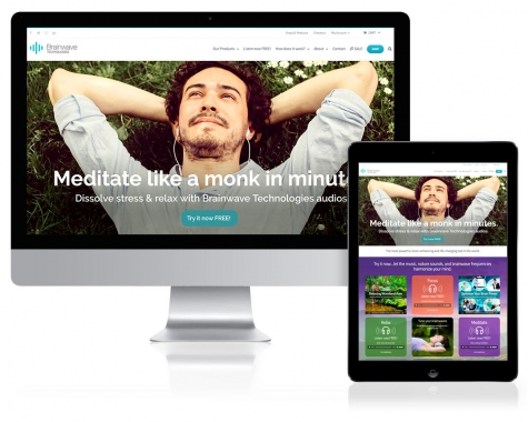 WordPress Website Design for Brainwave Technologies, Winter Park, FL
